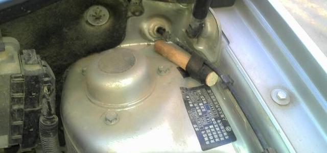 发动机舱进了老鼠,不仅恶心还毁车!有什么办法解决?